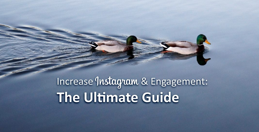 Increase Instagram Followers & Engagement: The Ultimate Guide